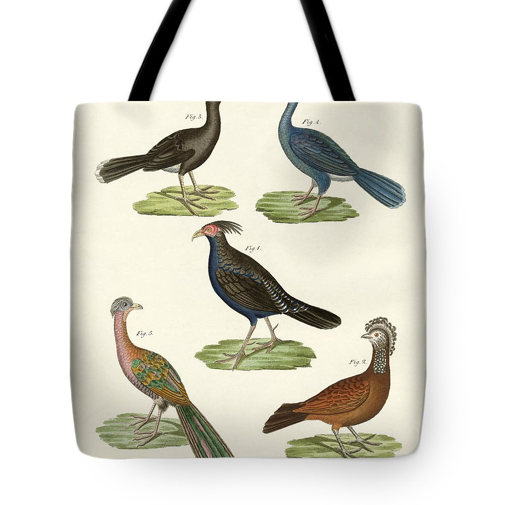 Bertuch Tote Bag featuring the drawing Hen-like Birds Of Hot Countries by Splendid Art Prints