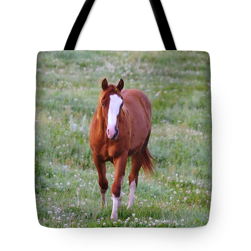 Horse Tote Bag featuring the photograph Here She Comes by Jeff Swan