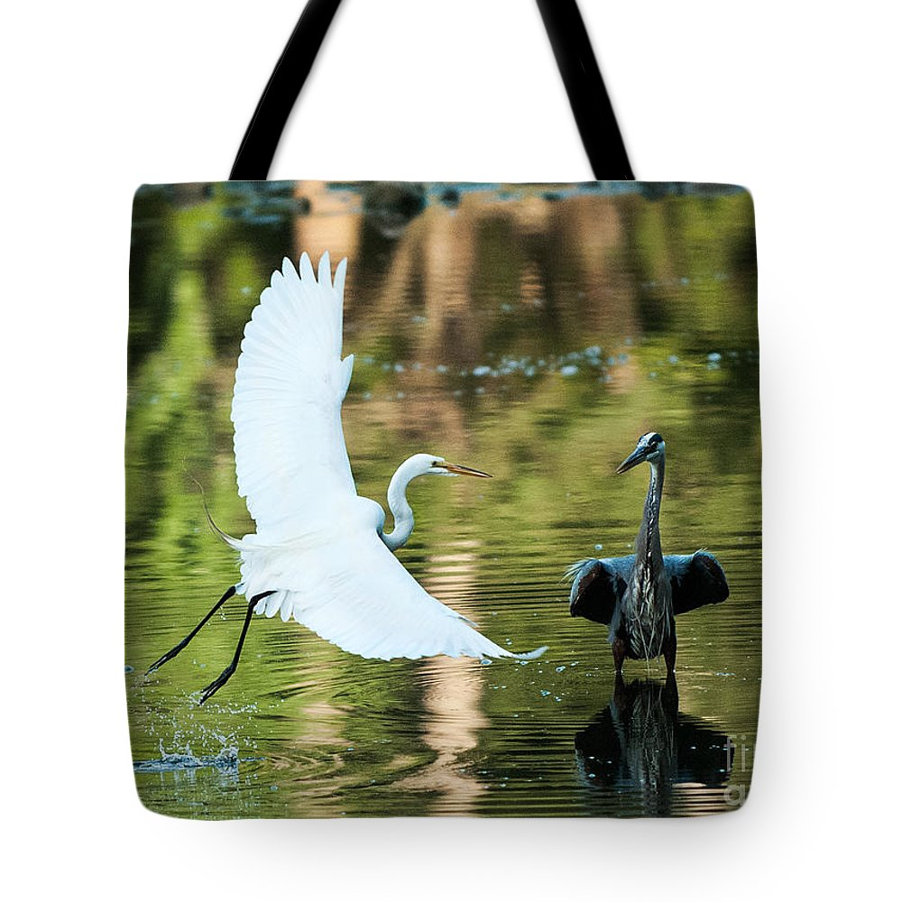 Heron Tote Bag featuring the photograph Herons by Michael Shake