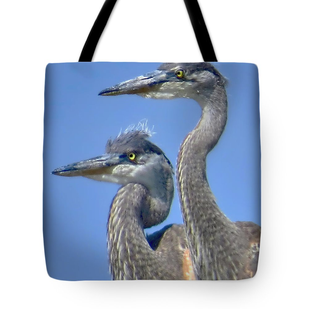 Heron Tote Bag featuring the photograph Herons On The Lookout by Jennie Breeze