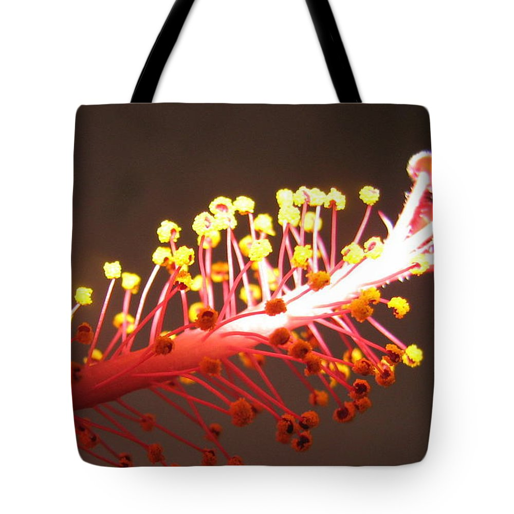 Hibiscus Tote Bag featuring the photograph Hibiscus by Mary Ellen Mueller Legault