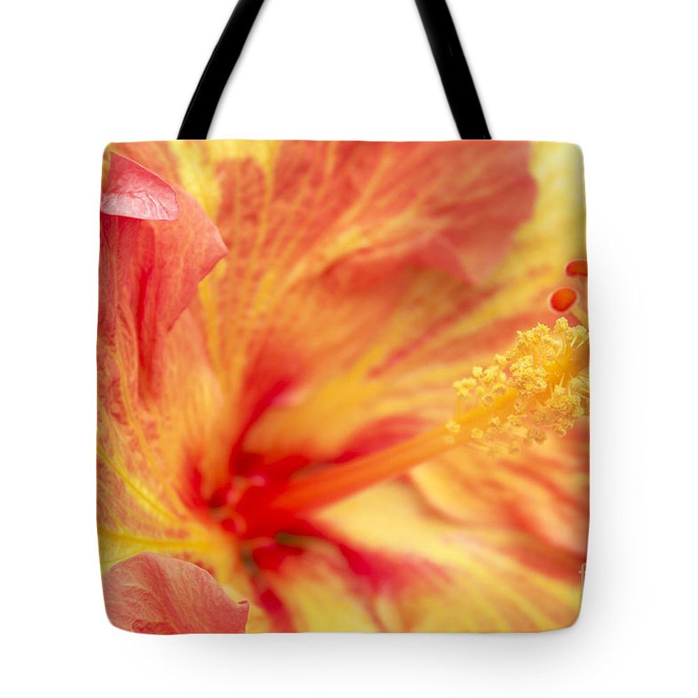Hibiscus Tote Bag featuring the photograph Hibiscus by Tony Cordoza