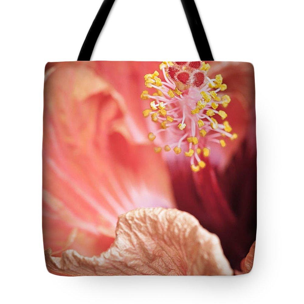 Beautiful Tote Bag featuring the photograph Hibuscus Talking By Zina Zinchik by Zina Zinchik