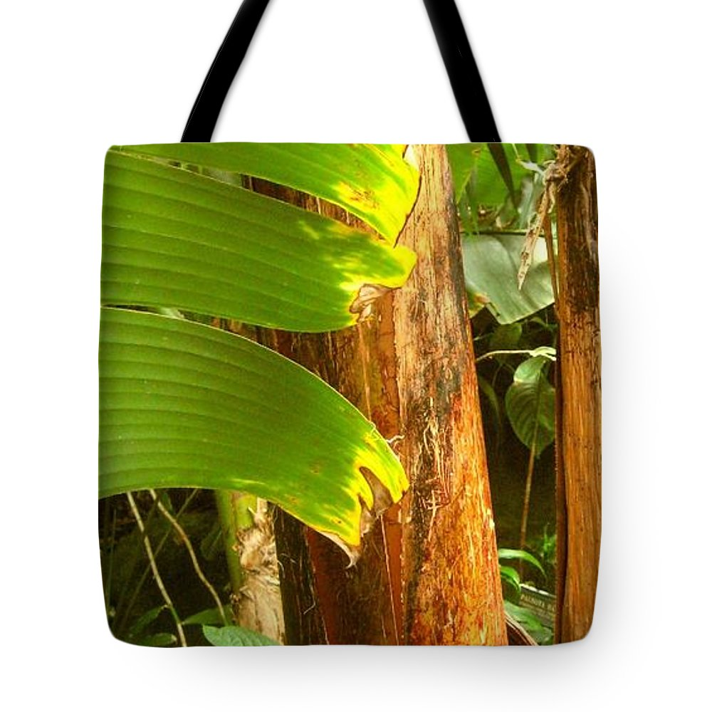 Nature Tote Bag featuring the photograph Hidden From The Bunch by Melissa McCrann