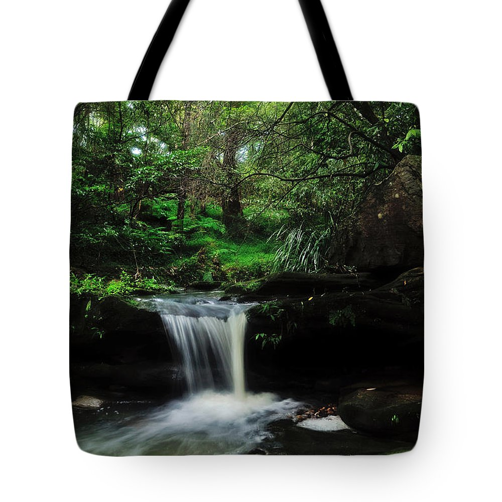 Photography Tote Bag featuring the photograph Hidden Rainforest by Kaye Menner