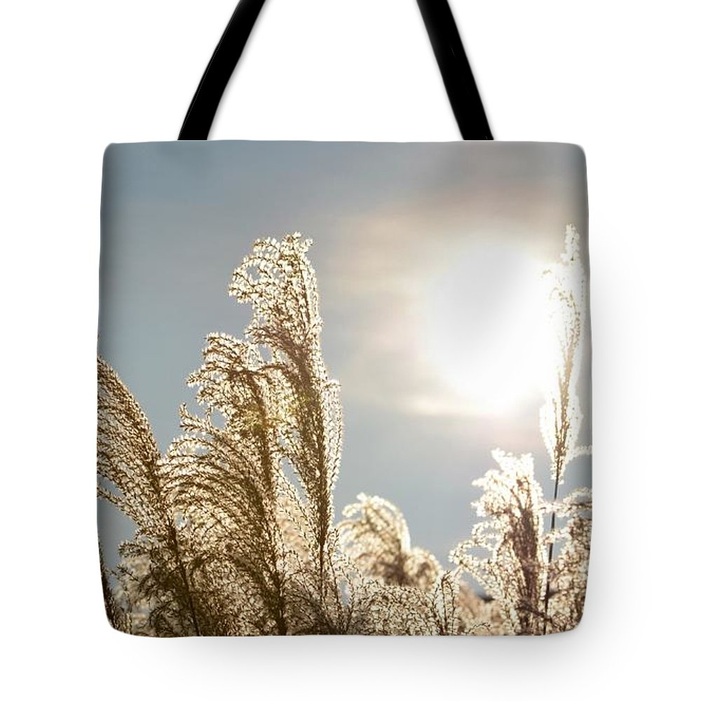 Willows Tote Bag featuring the photograph High Noon by Debbie Summers
