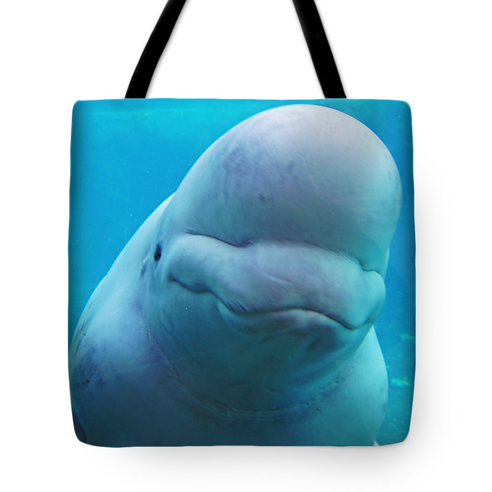 Beluga Tote Bag featuring the photograph Higher Being by Joe Geraci