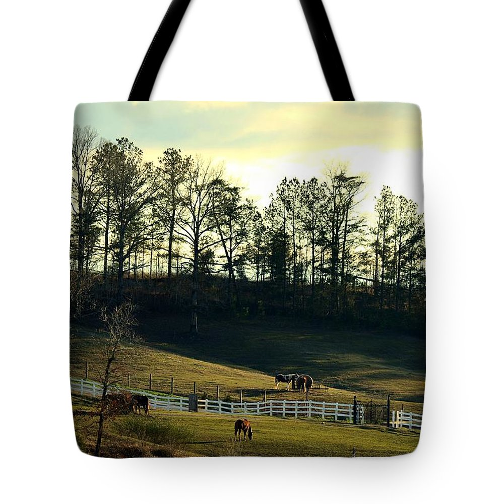 Hill Country Tote Bag featuring the photograph Hill Country by Maria Urso