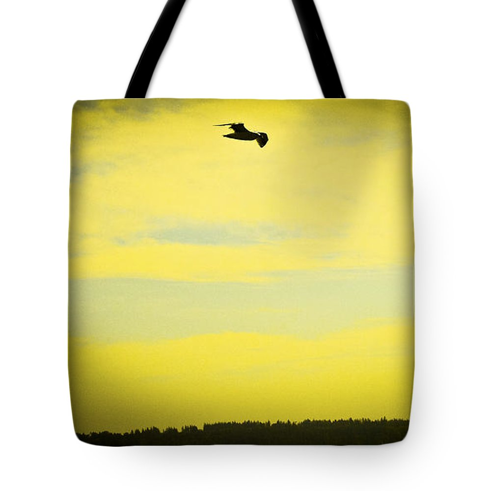 White Rock Tote Bag featuring the photograph Hipster Flight by David Fabian