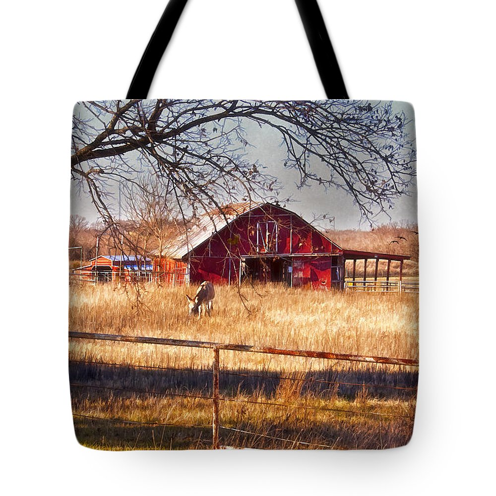 Barn Tote Bag featuring the photograph His Home by Joan Bertucci