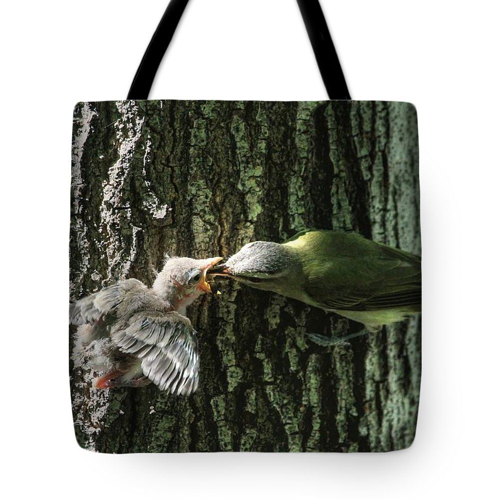 Vireo Tote Bag featuring the photograph History In The Making? by Donna Kennedy