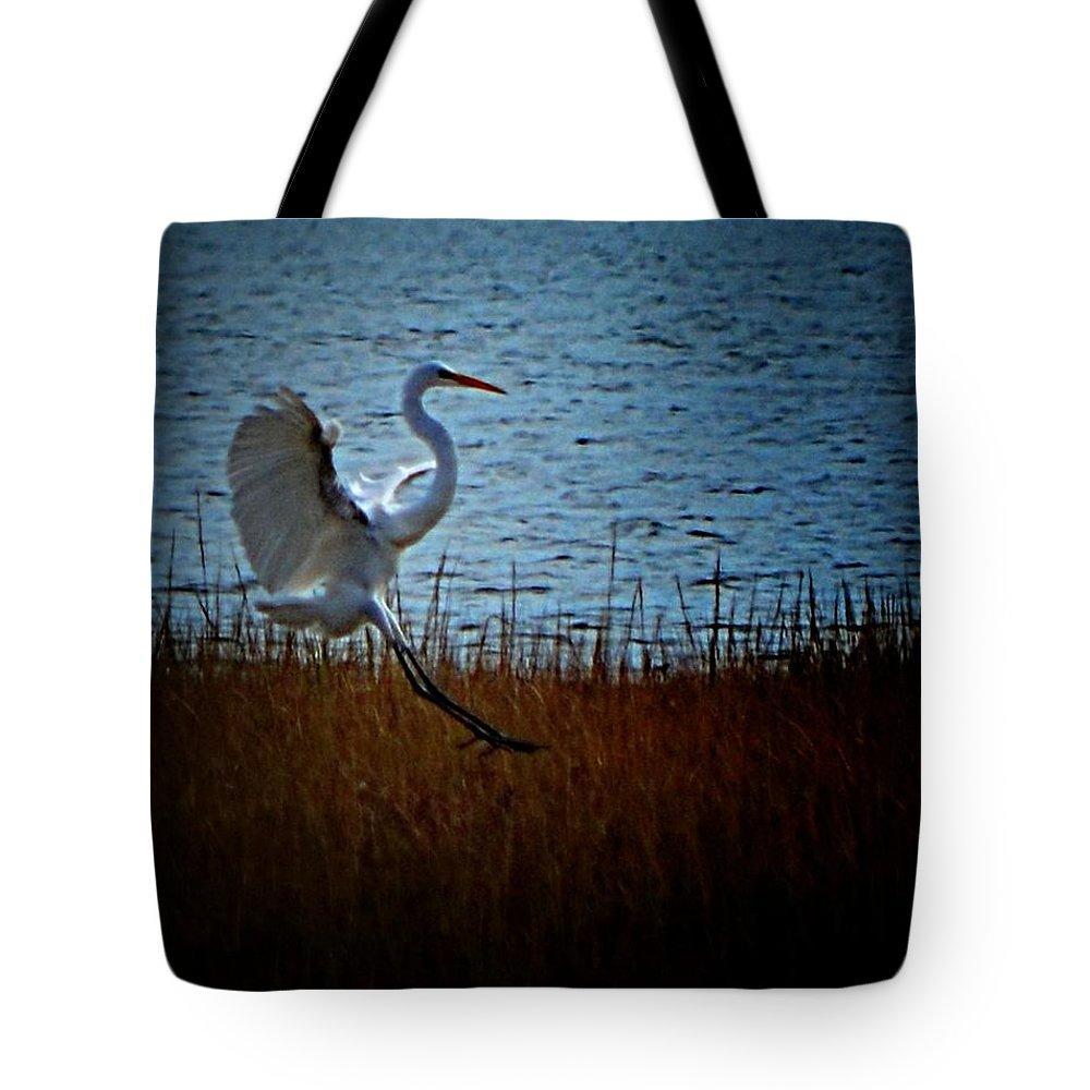 Birds Tote Bag featuring the photograph Hittin Da Brakes by Robert McCubbin