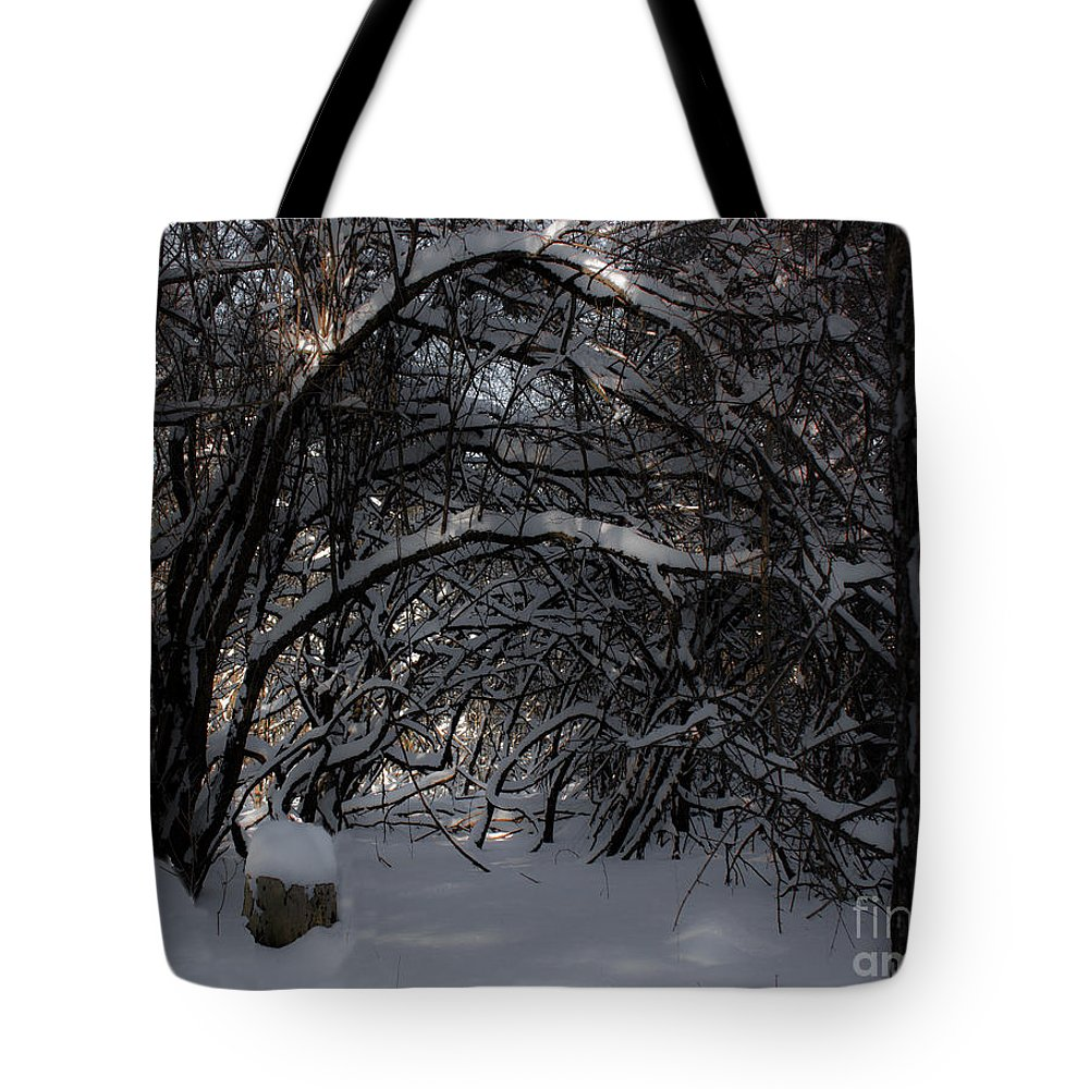 Winter Tote Bag featuring the photograph Hobbit Stump by Barbara McMahon