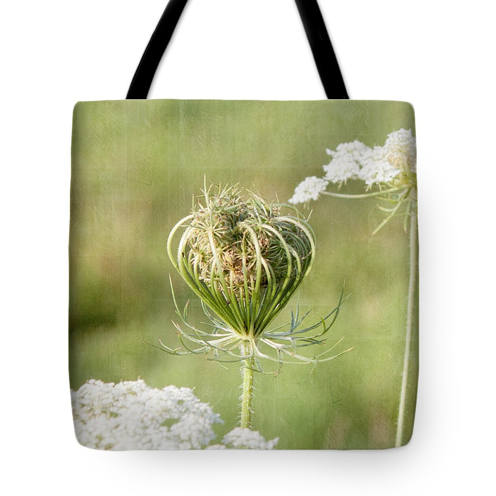 Field Tote Bag featuring the photograph Holding On To Everything by K Hines