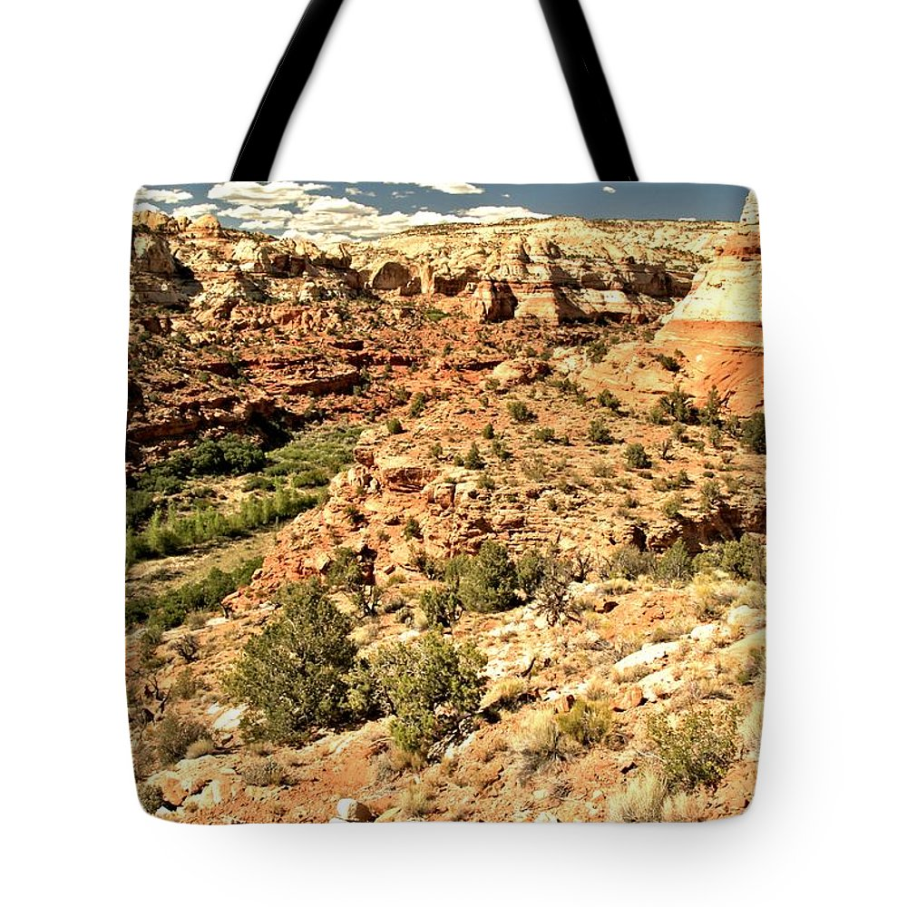 Calf Creek Falls Tote Bag featuring the photograph Home Of Calf Creek Falls by Adam Jewell