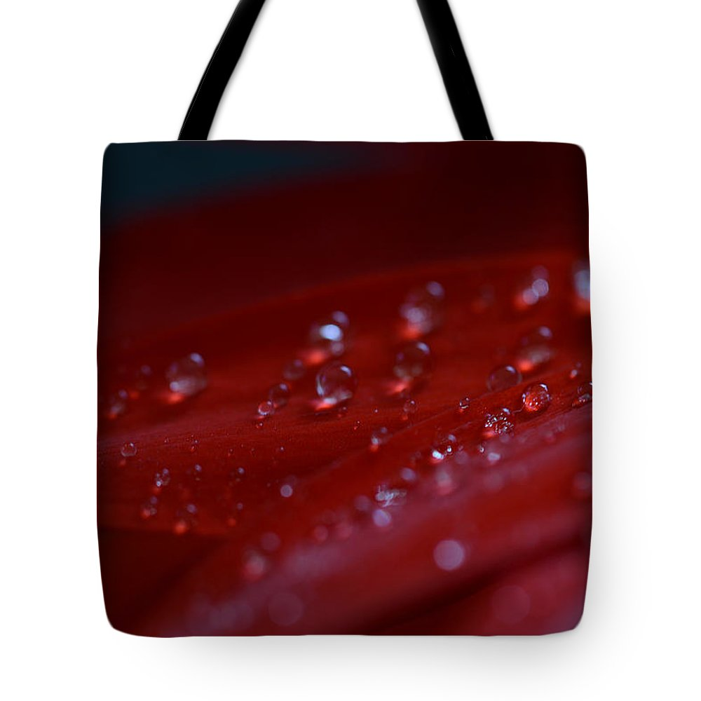 Red Tote Bag featuring the photograph Homesick by Melanie Moraga