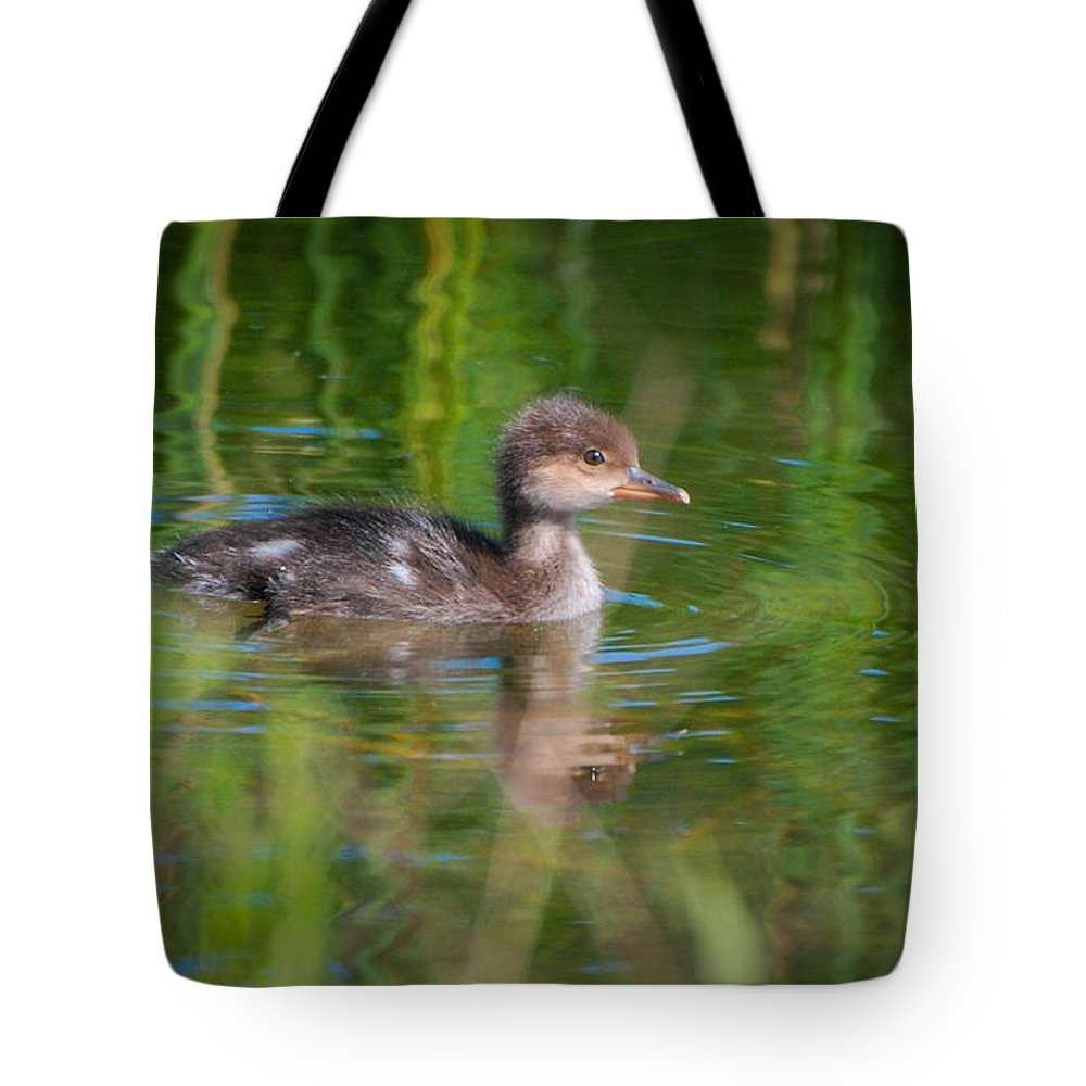 Duck Tote Bag featuring the photograph Hooded Merganser Duckling by Amy Porter