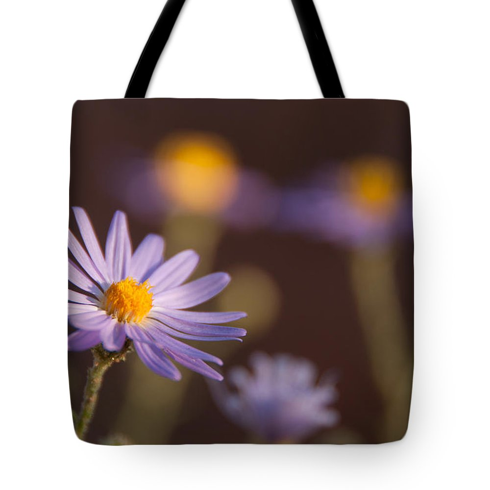 Photography Tote Bag featuring the digital art Horay Spine Aster by Neal Hebert