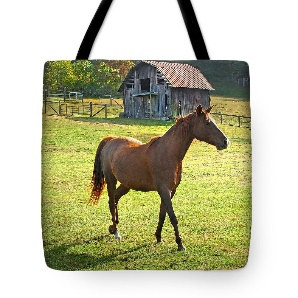Duane Mccullough Tote Bag featuring the photograph Horse And Old Barn In Etowah by Duane McCullough