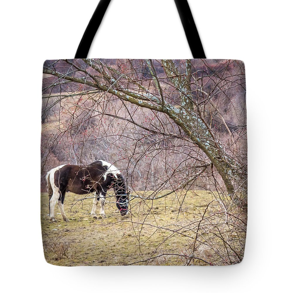 Winter Tote Bag featuring the photograph Horse And Winter Berries by DAC Photo