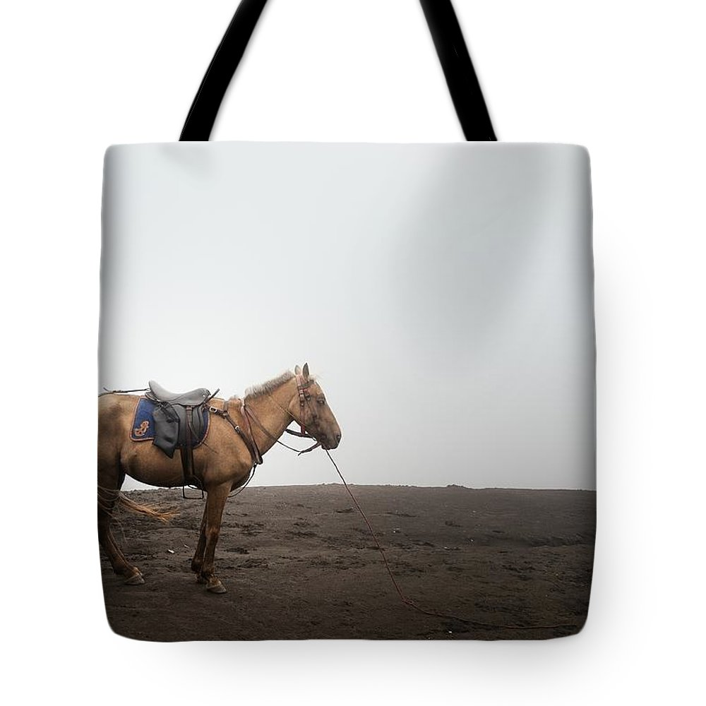 Horse Tote Bag featuring the photograph Horse On A Mountain On A Foggy Day by Carlina Teteris