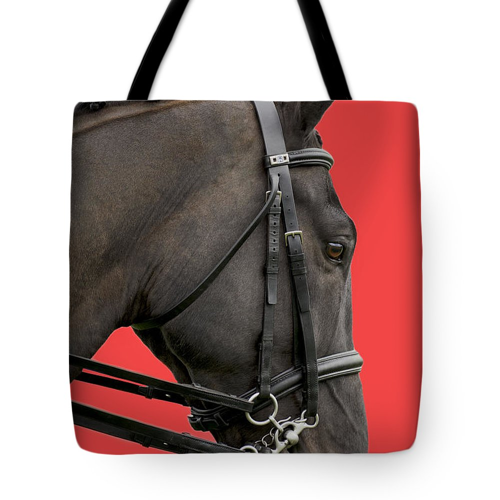Isolated On Red Tote Bag featuring the photograph Horse On Red by Linsey Williams
