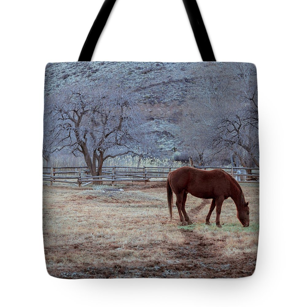 Horse Tote Bag featuring the photograph Horse Portrait by Southwindow Eugenia Rey-Guerra