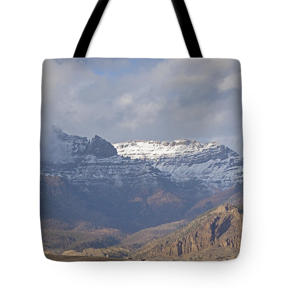 Horses Tote Bag featuring the photograph Horses In North Fork Canyon  #4876 by J L Woody Wooden