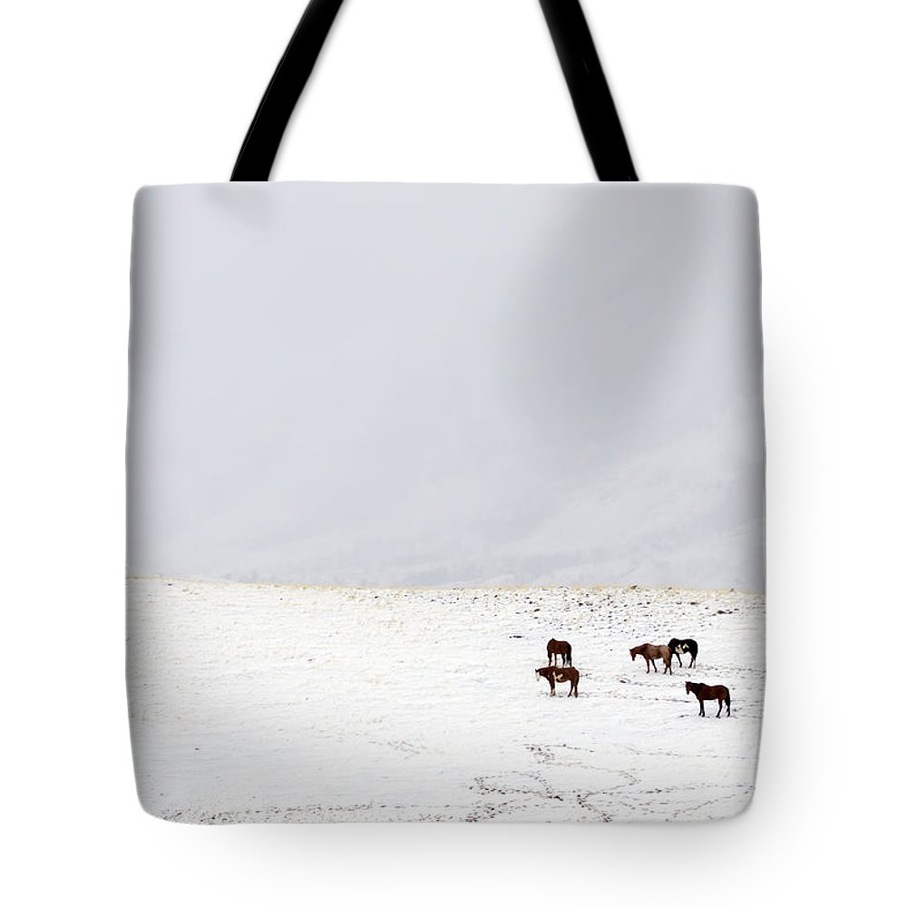 Equus Caballus Tote Bag featuring the photograph Horses In Snow  #9370 by J L Woody Wooden