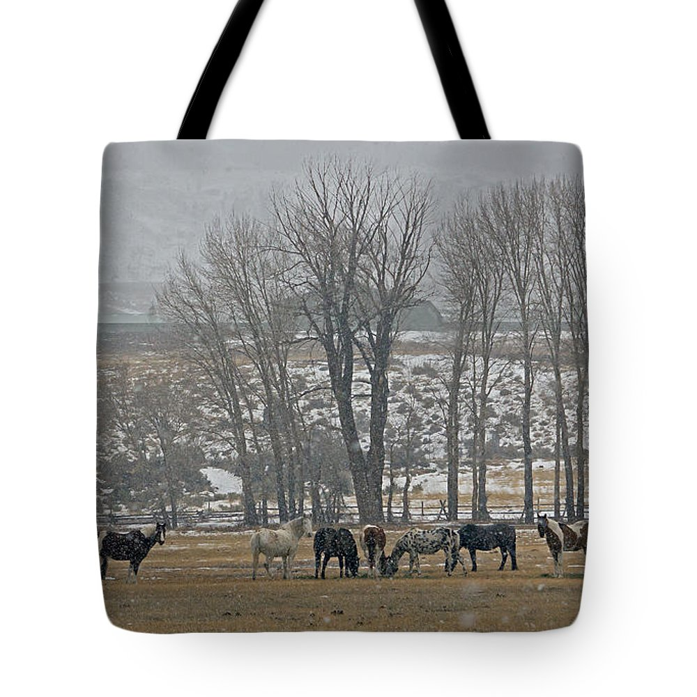 Horses Tote Bag featuring the photograph Horses In The Snow  #7940 by J L Woody Wooden