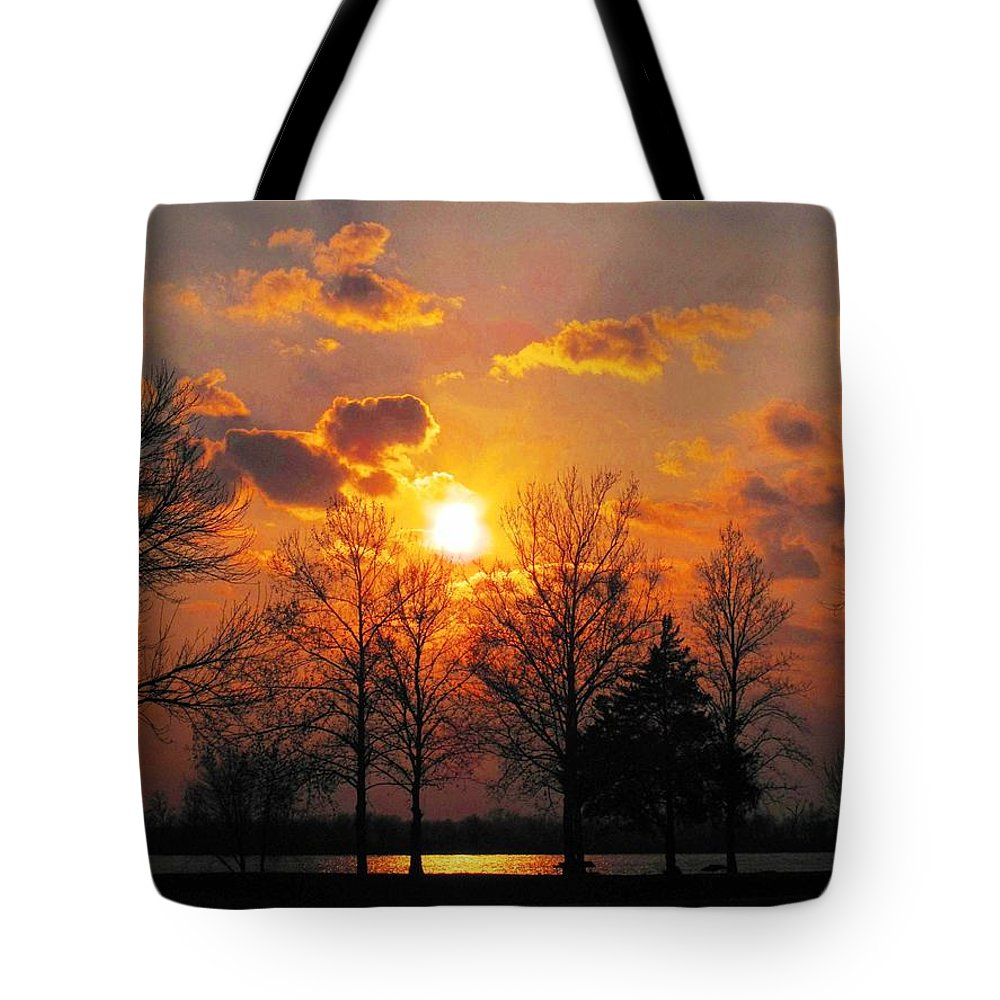 Ann Willmore Photography Tote Bag featuring the photograph Horseshoe Lake In March by Ann Willmore