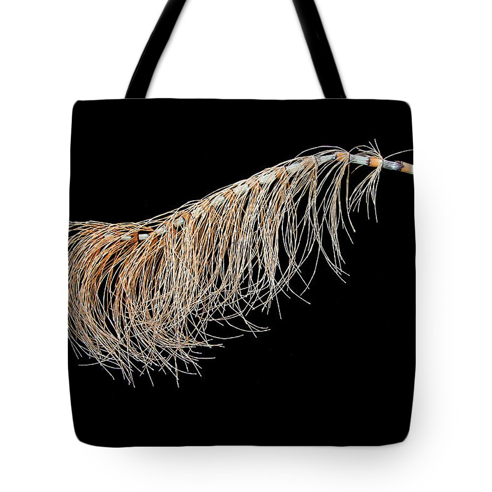 Horsetail Tote Bag featuring the photograph Horsetail On Black by Robert Woodward
