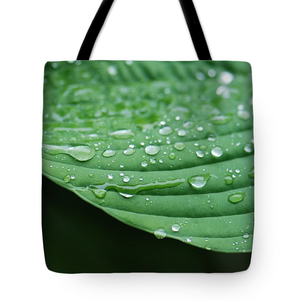 Rain Tote Bag featuring the photograph Hosta Leaves by Amy Porter
