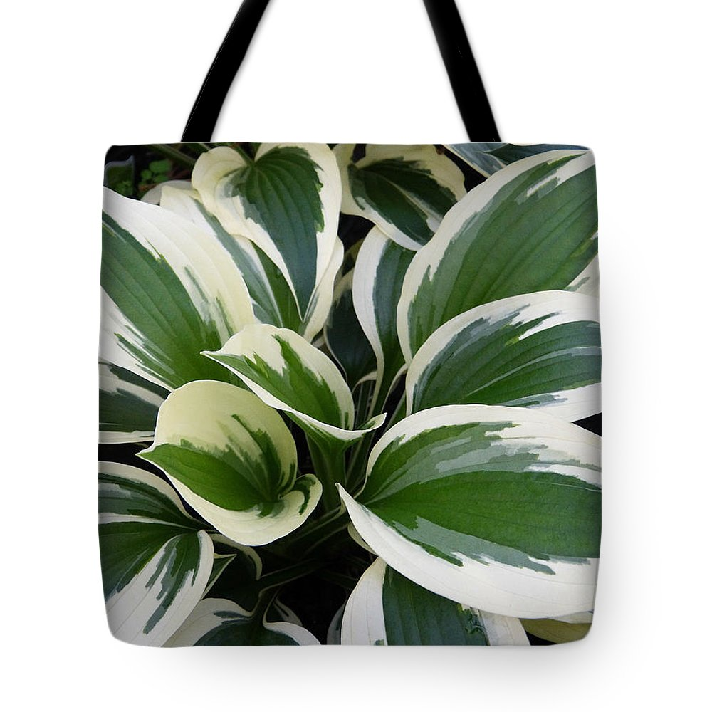 Macro Tote Bag featuring the photograph Hosta by Pete Trenholm