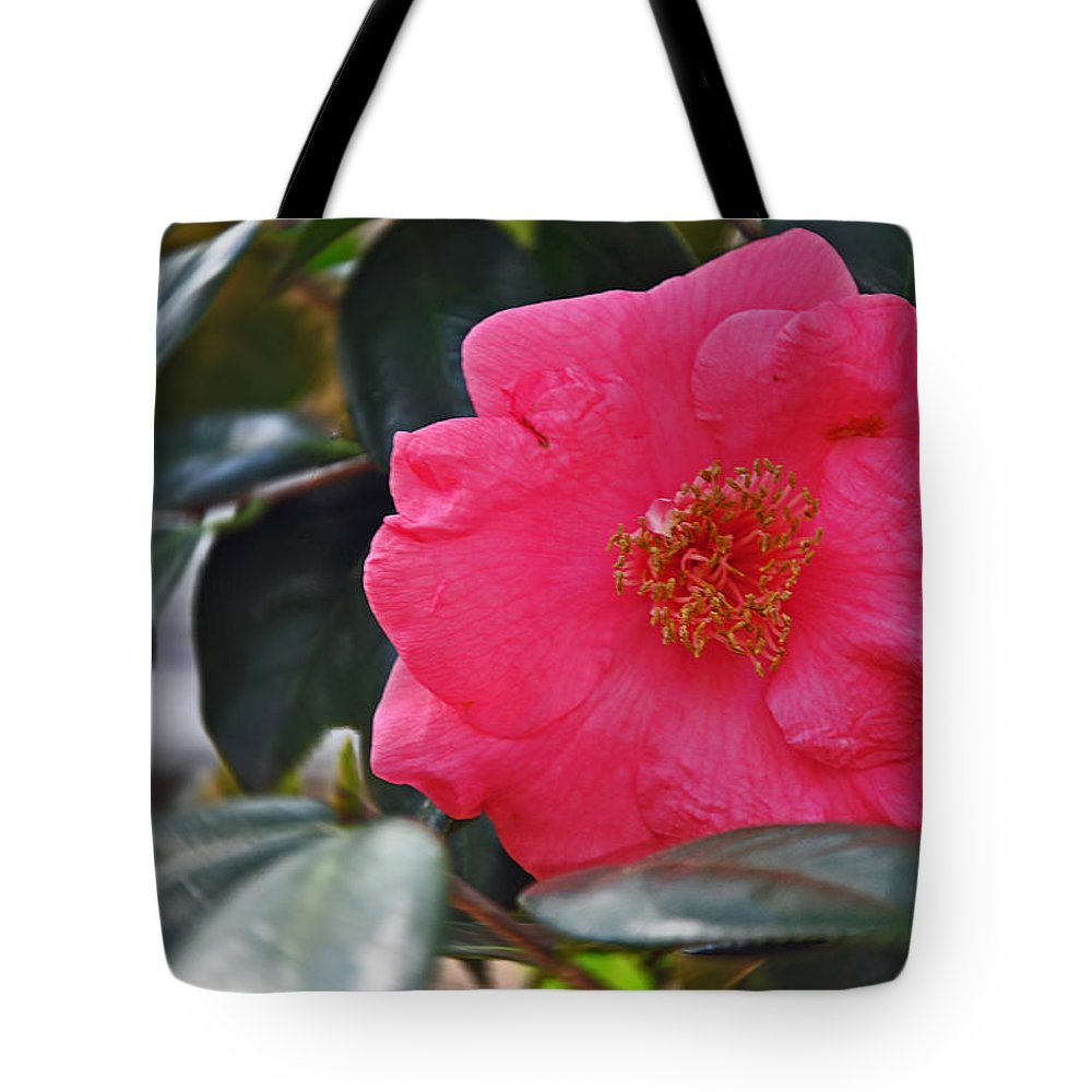 Floral Tote Bag featuring the photograph Hot Pink Camellia by Deborah Good