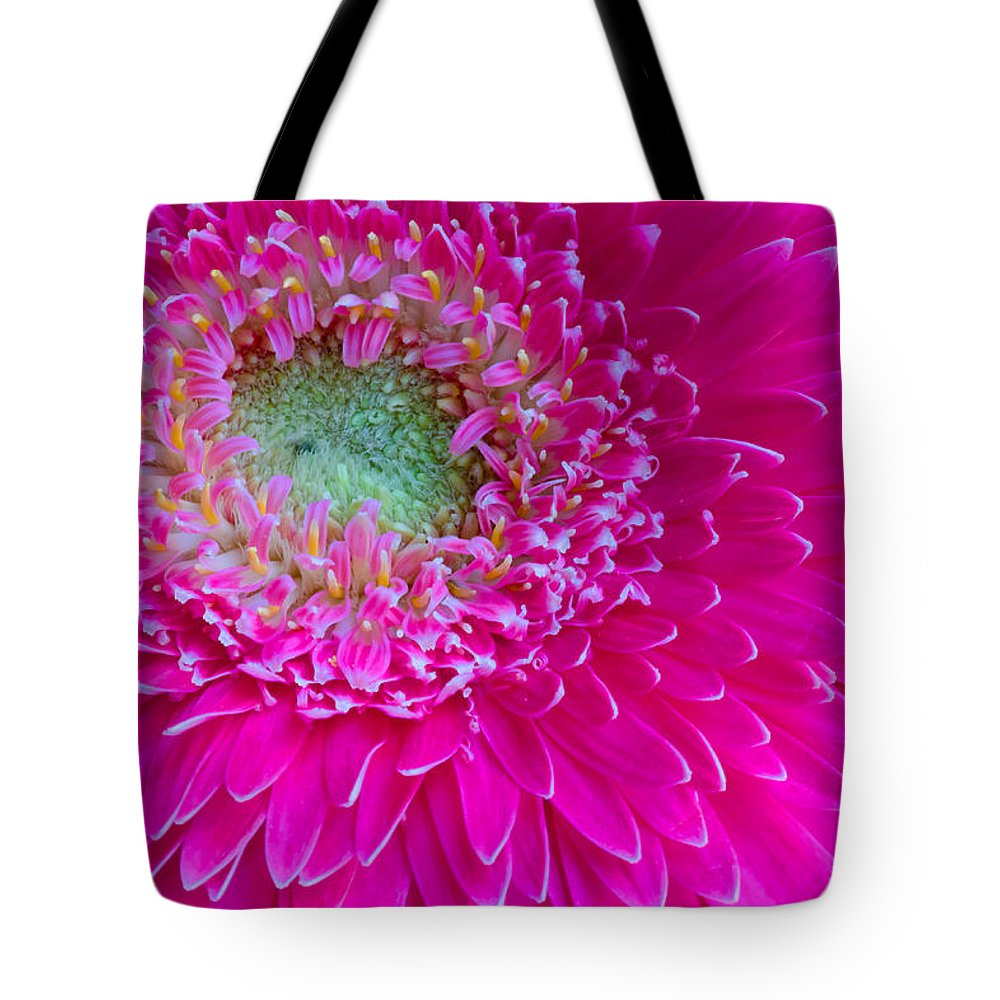 Gerbera Tote Bag featuring the photograph Hot Pink Gerbera Daisy by Heidi Smith
