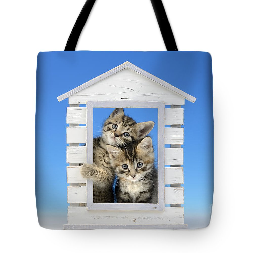 Two Tote Bag featuring the digital art House Of Kittens Ck528 by Greg Cuddiford