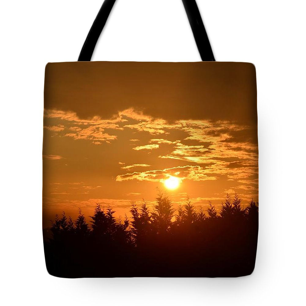 How Majestic Is Your Name Ii Tote Bag featuring the photograph How Majestic Is Your Name II by Maria Urso