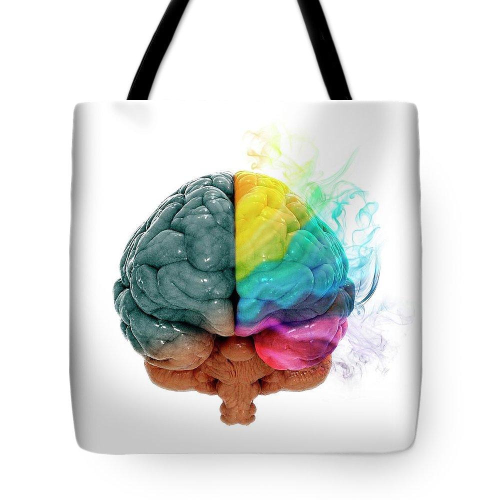 White Background Tote Bag featuring the digital art Human Brain, Artwork by Andrzej Wojcicki
