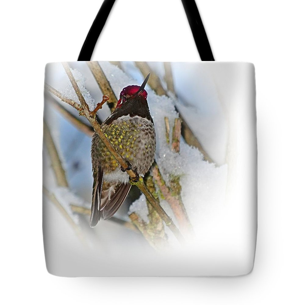 Humming Bird Tote Bag featuring the photograph Humming Bird And Snow 4 by Nick Kloepping