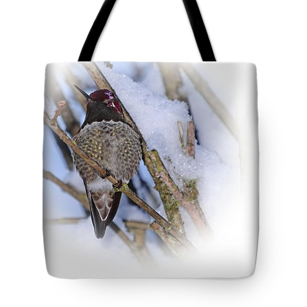 Humming Bird Tote Bag featuring the photograph Humming Bird And Snow 5 by Nick Kloepping