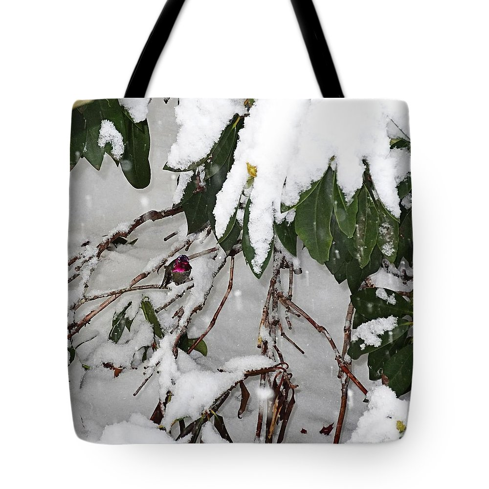 Humming Bird Tote Bag featuring the photograph Humming Bird And Snow by Nick Kloepping