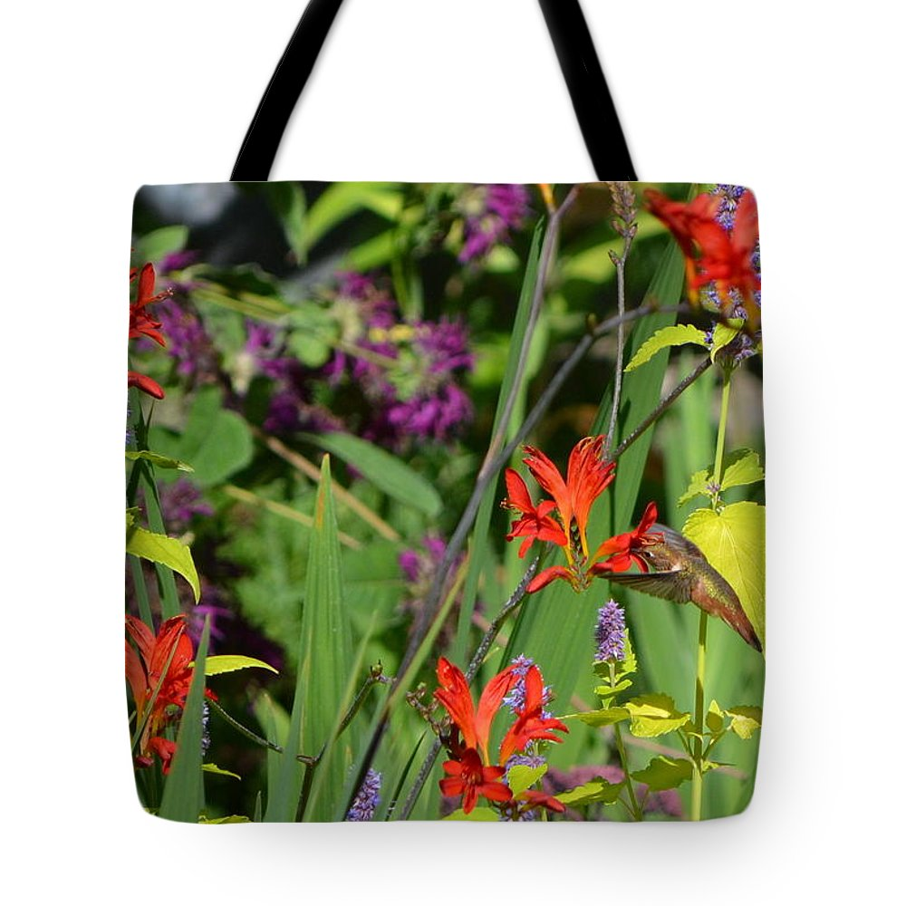 Hummingbird Tote Bag featuring the photograph Hummingbird And Crocosmia Lucifer by Michelle Calkins