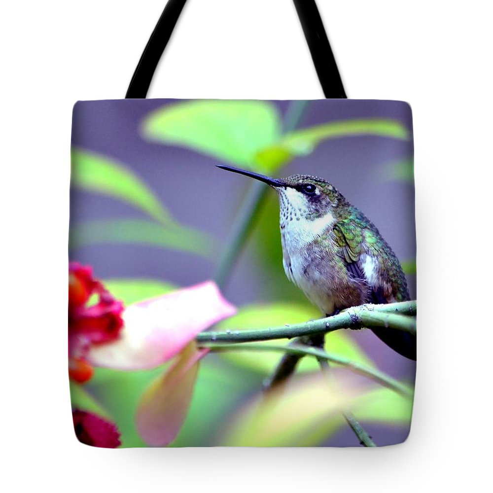 Hummingbird Tote Bag featuring the photograph Hummingbird by Deena Stoddard