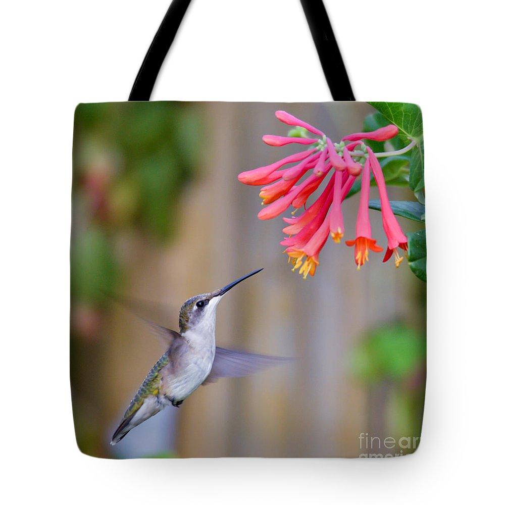 Hummingbird Tote Bag featuring the photograph Hummingbird Happiness by Kerri Farley