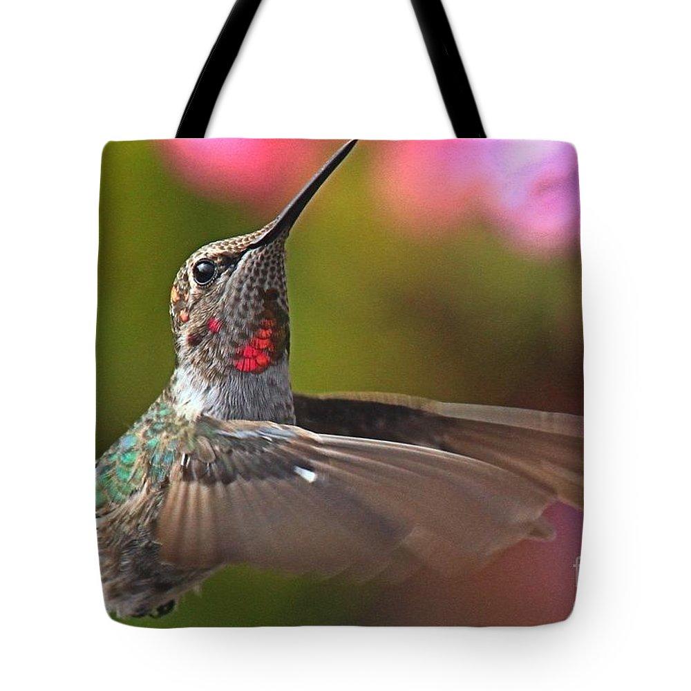 Hummingbird Tote Bag featuring the photograph Hummingbird Intensity by Adam Jewell