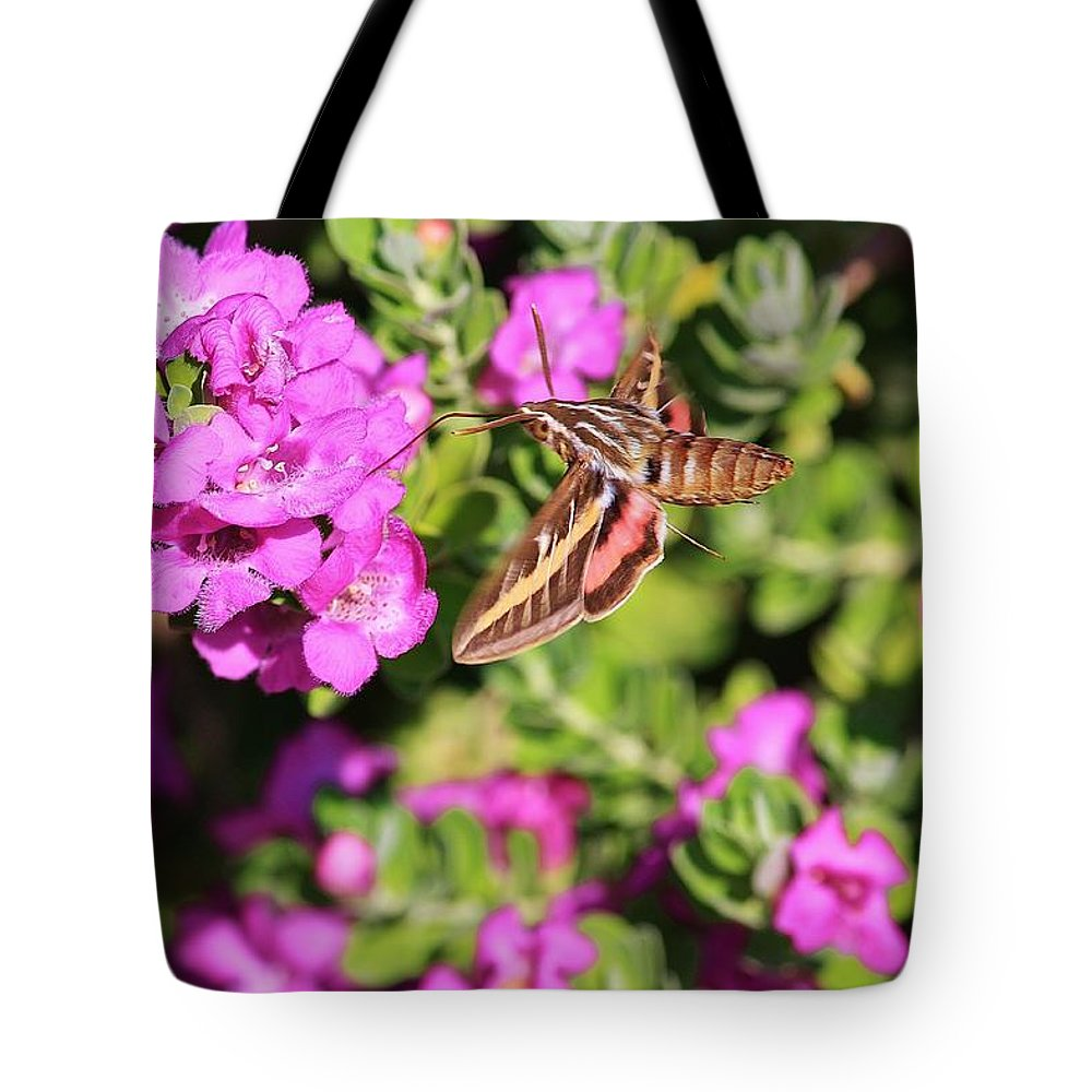 Flowers Tote Bag featuring the photograph Hummingbird Moth by Marcia Breznay