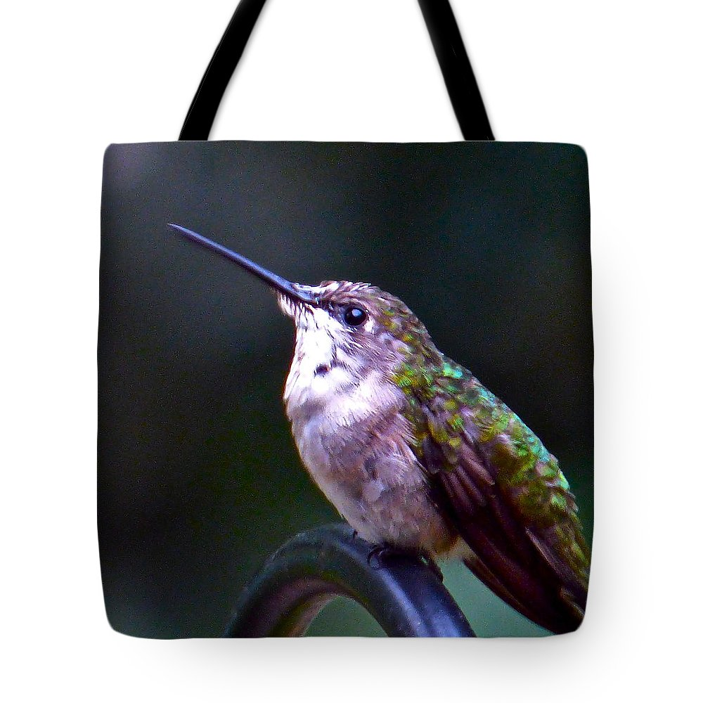 Hummingbird Tote Bag featuring the photograph Hummingbird Sentry by Jean Wright