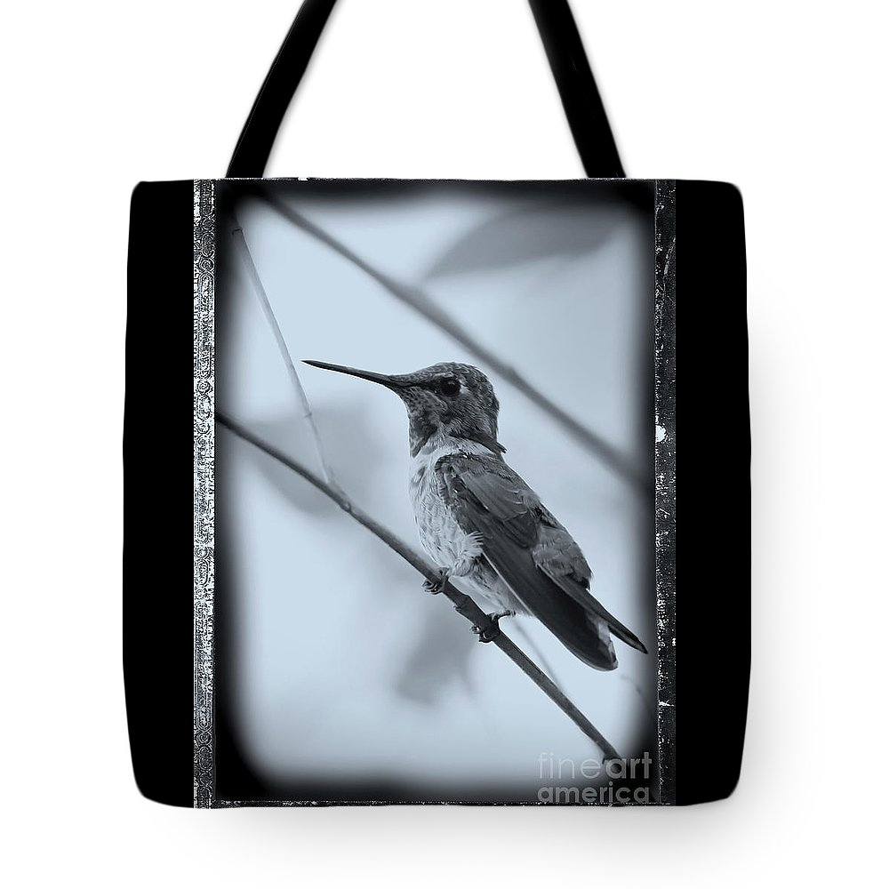 Hummingbird Tote Bag featuring the photograph Hummingbird With Old-fashioned Frame 1 by Carol Groenen