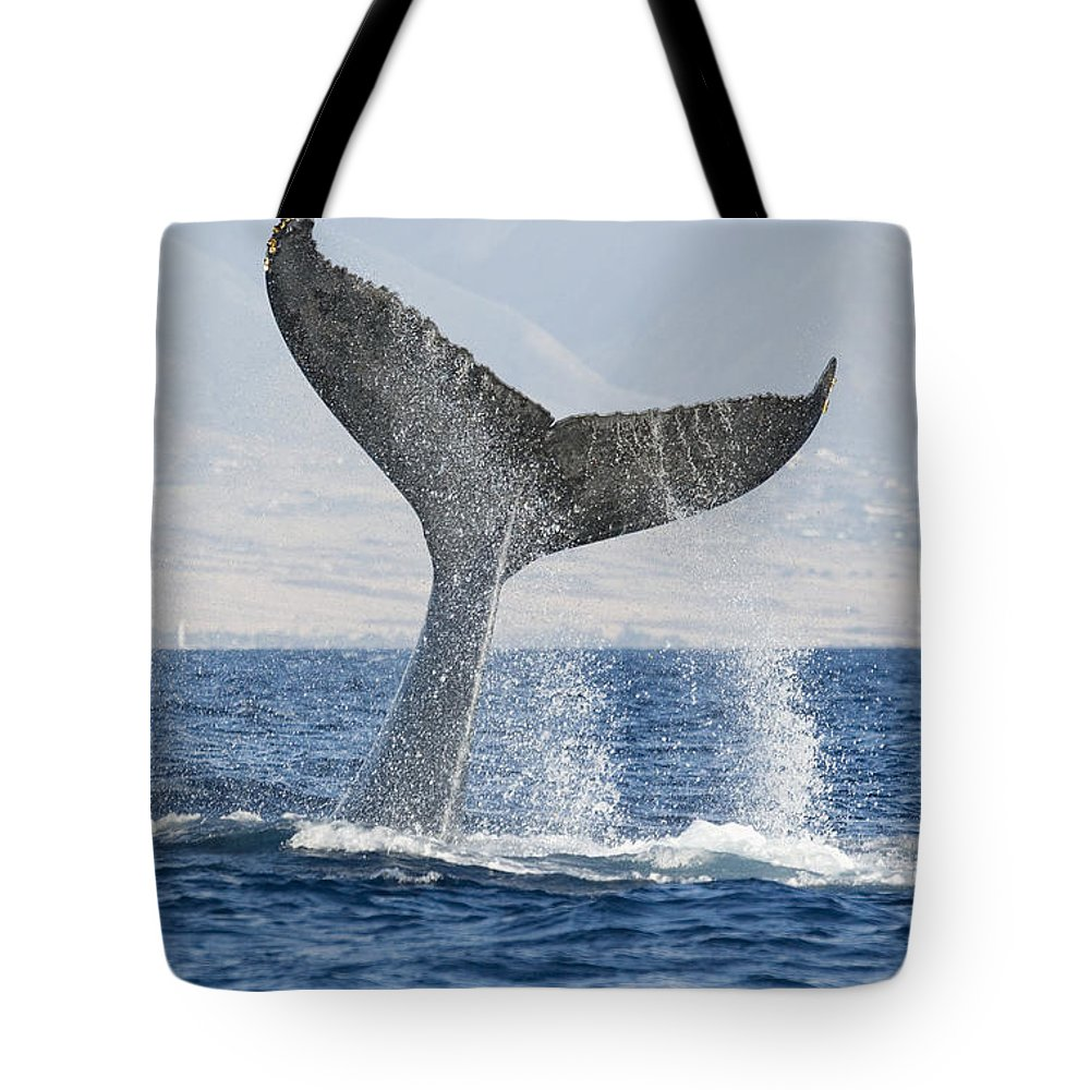 Above Tote Bag featuring the photograph Humpback Whale Fluking Its Tail by M Swiet Productions